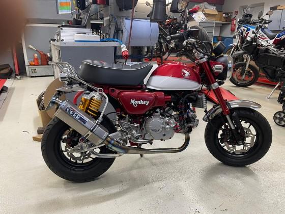 Winter Project  Monkey  Z125