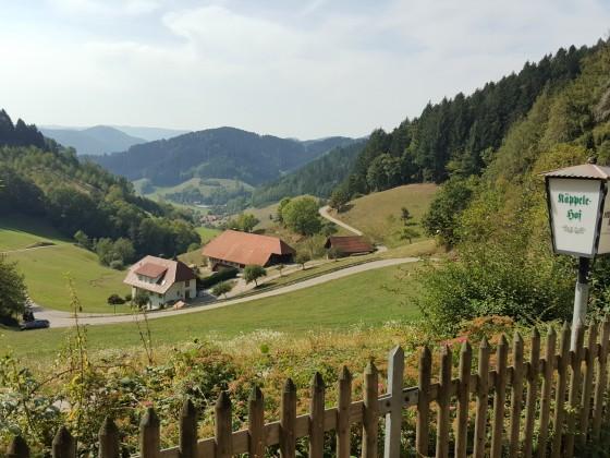 Schwarzwald Tour Hausach